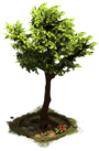 D SS StoneAge Tree.png